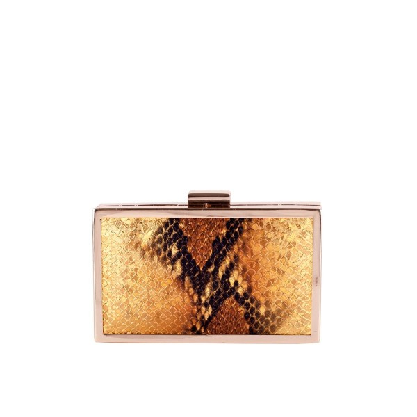 Gold Frame Pearlescent Boxy Clutch