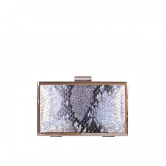 Metal Framed Pearlescent Box Clutch
